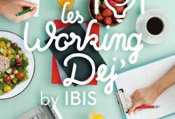 Auto-entrepreneurs, Working Dej Ibis avec la FEDAE