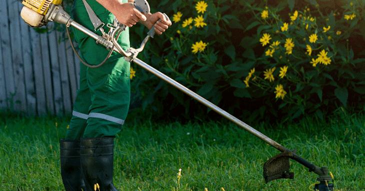 <h2>Auto-entrepreneur dans le jardinage : tout savoir !</h2>